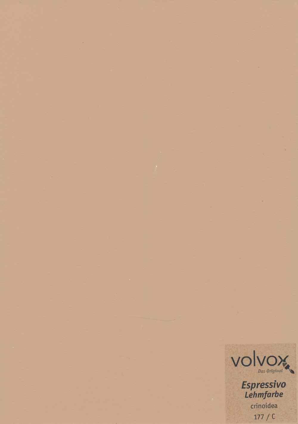 Volvox Espressivo Lehmfarbe 177 crinoidea